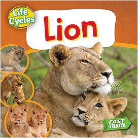 Cover: Lion