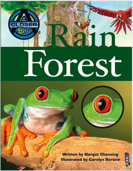Cover: Rain Forest