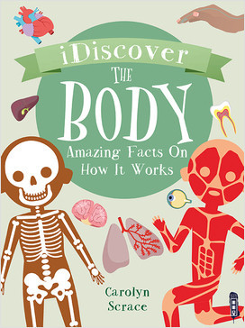 Cover: I Discover: The Body: Amazing Facts on How It Works