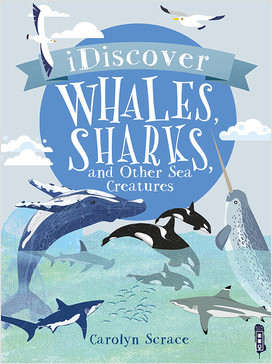 Cover: I Discover: Whales, Sharks, and Other Sea Creatures