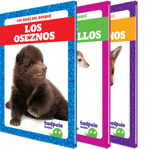 Cover: Los bebés del bosque (Forest Babies)