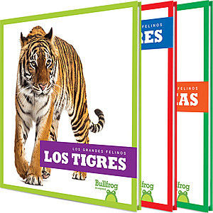 Cover: Los grandes felinos (Big Cats)