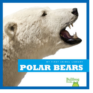 Cover: Polar Bears