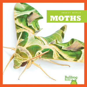 Cover: Moths