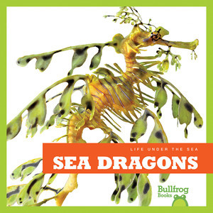 Cover: Sea Dragons