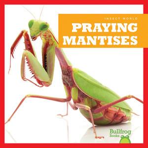 Cover: Praying Mantises