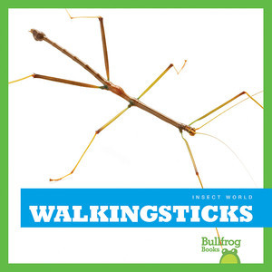 Cover: Walkingsticks