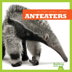 Cover: Anteaters