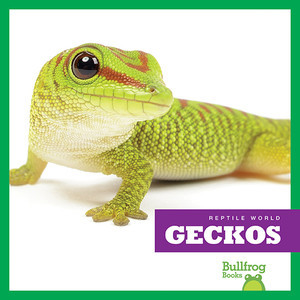 Cover: Geckos