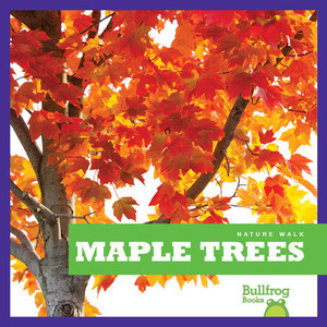Cover: Maple Trees