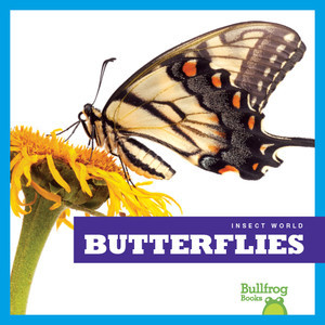 Cover: Butterflies