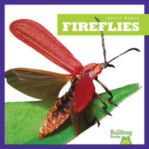 Cover: Fireflies