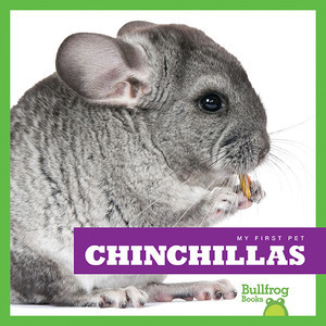Cover: Chinchillas