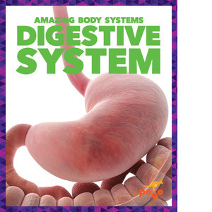 Cover: Digestive System