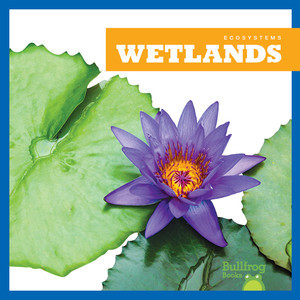 Cover: Wetlands