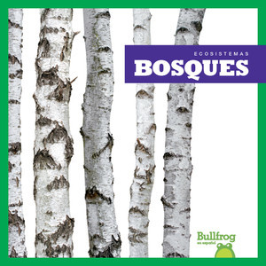 Cover: Bosques (Forests)