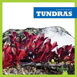 Cover: Tundras (Tundras)