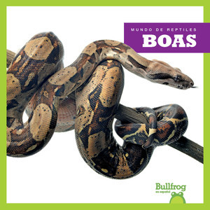 Cover: Boas (Boa Constrictors)