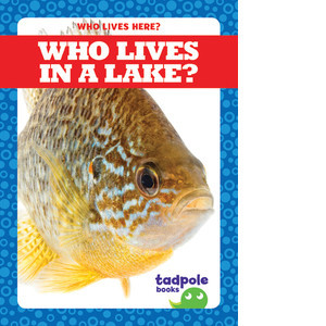 Cover: Who Lives in a Lake?