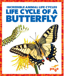 Cover: Life Cycle of a Butterfly