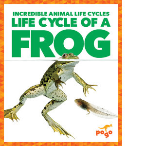 Cover: Life Cycle of a Frog