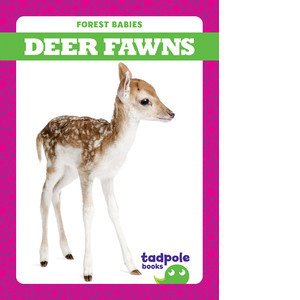 Cover: Deer Fawns