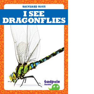 Cover: I See Dragonflies