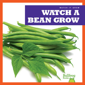 Cover: Watch a Bean Grow