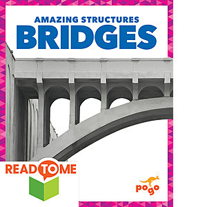 Cover: Bridges (Readalong Edition)