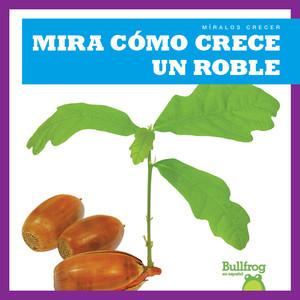 Cover: Mira cómo crece un roble (Watch an Oak Tree Grow)