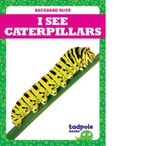 Cover: I See Caterpillars