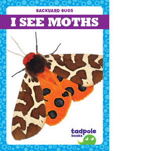 Cover: I See Moths