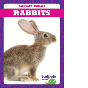 Cover: Rabbits