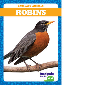 Cover: Robins