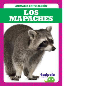 Cover: Los mapaches (Raccoons)