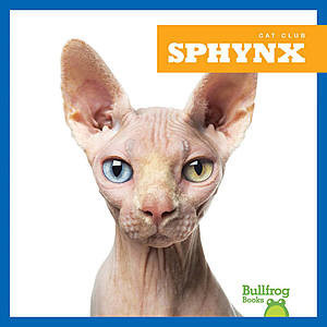 Cover: Sphynx