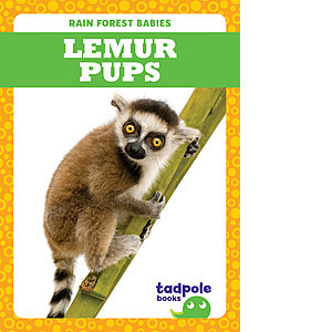 Cover: Lemur Pups