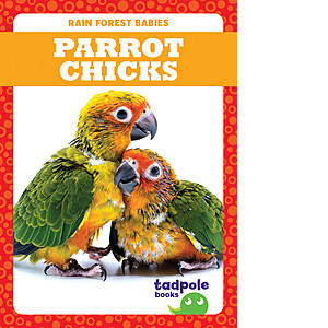 Cover: Parrot Chicks