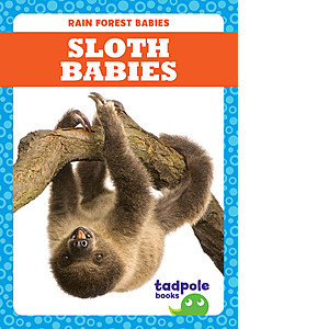 Cover: Sloth Babies
