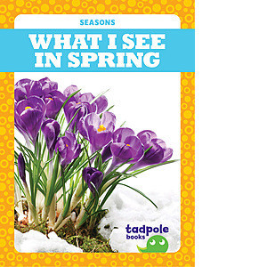 Cover: What I See in Spring