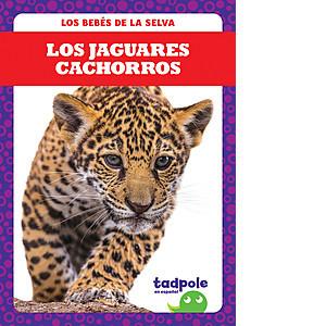Cover: Los jaguares cachorros (Jaguar Cubs)