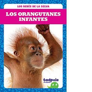 Cover: Los orangutanes infantes (Orangutan Infants)