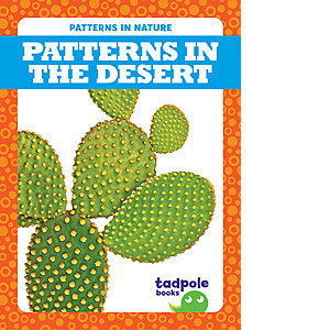 Cover: Patterns in the Desert