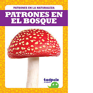 Cover: Patrones en la naturaleza (Patterns in Nature)