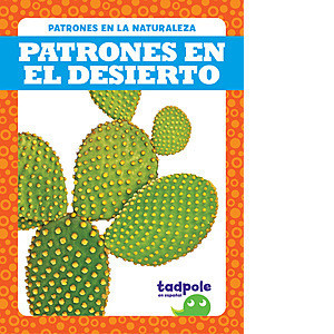 Cover: Patrones en el desierto (Patterns in the Desert)