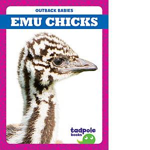 Cover: Emu Chicks