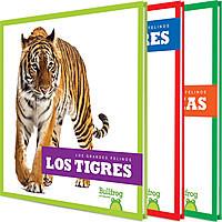 Cover: Los grandes felinos (Big Cats)