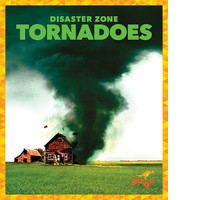Cover: Tornadoes