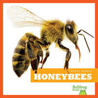 Cover: Honeybees