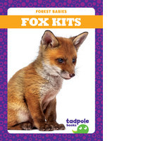Cover: Fox Kits